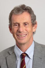 Professor David Gwynne-Jones