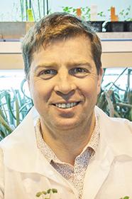 Professor Richard Macknight
